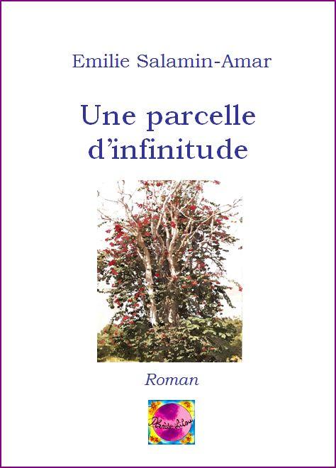 une_parcelle_infinitude