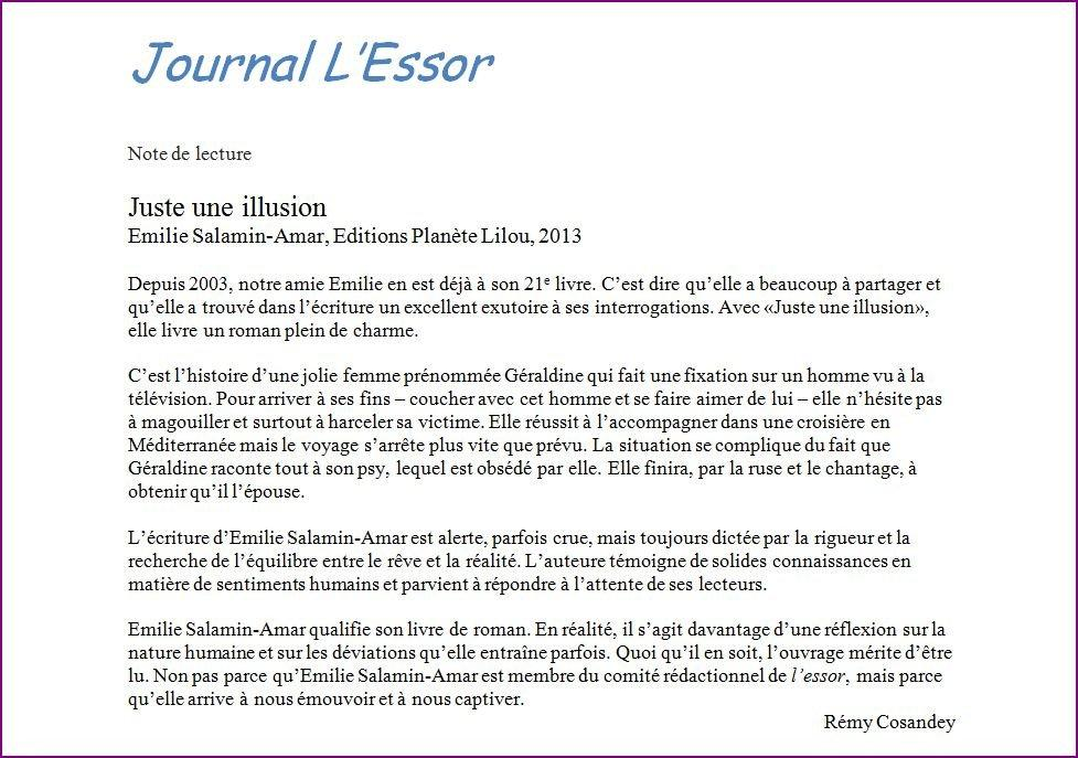 fiche_lecture_illusion_essor_2013