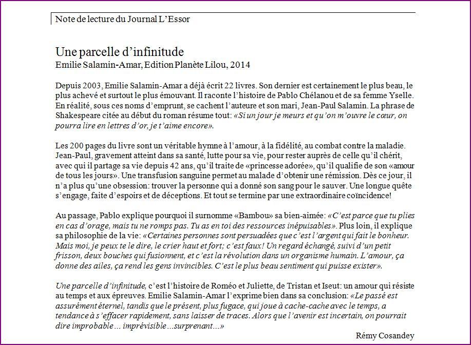 infinitude_journal_essor_2014